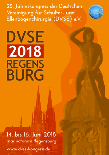 DVSE 2018 Programm